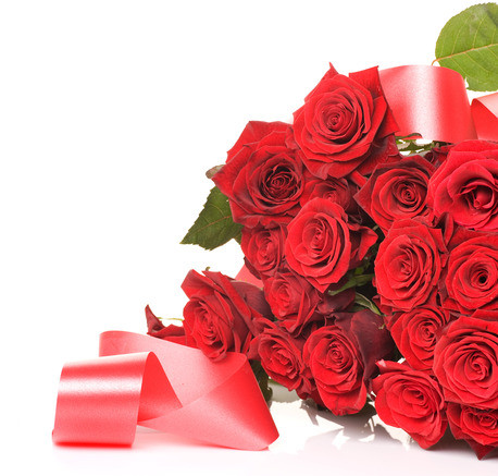 photodune 1564278 bunch of red roses isolated on white xs