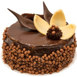 photodune 3098958 chocolate cake xs