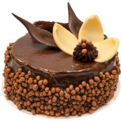 photodune 3098958 chocolate cake xs
