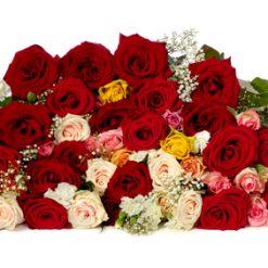 45 mixed roses