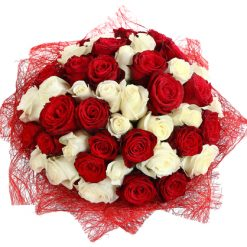 51red and white roses